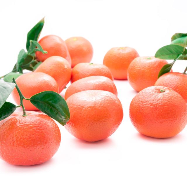"""Fresh tangerines"" stock image"