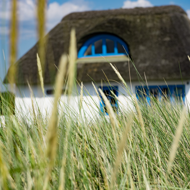 """""""House in the dunes"""" stock image"""