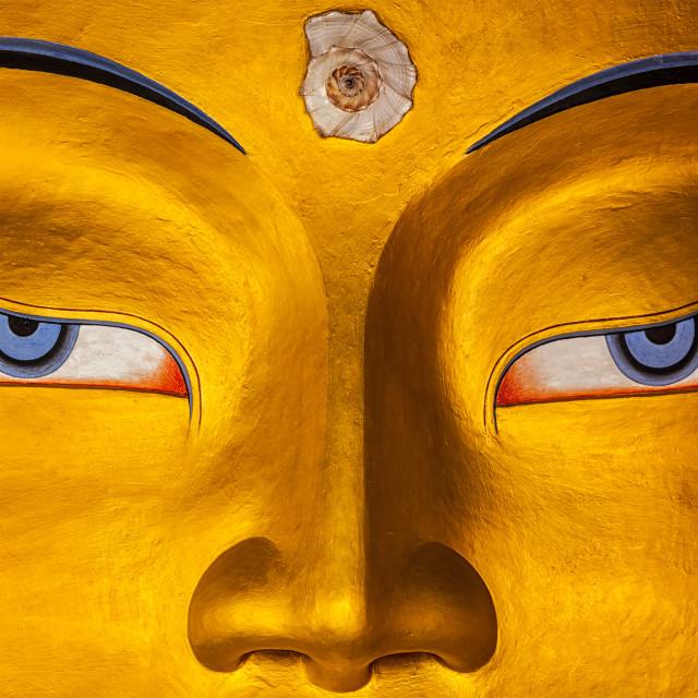 """""""Maitreya Buddha face close up, Ladakh"""" stock image"""