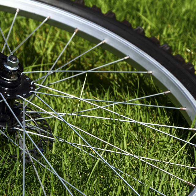 """Bicycle wheel"" stock image"