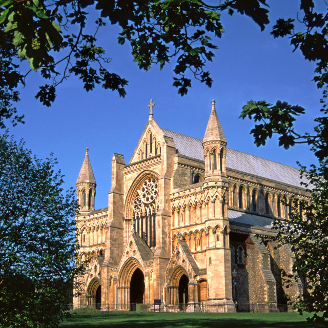 """""""St Albans Abbey through the trees."""" stock image"""
