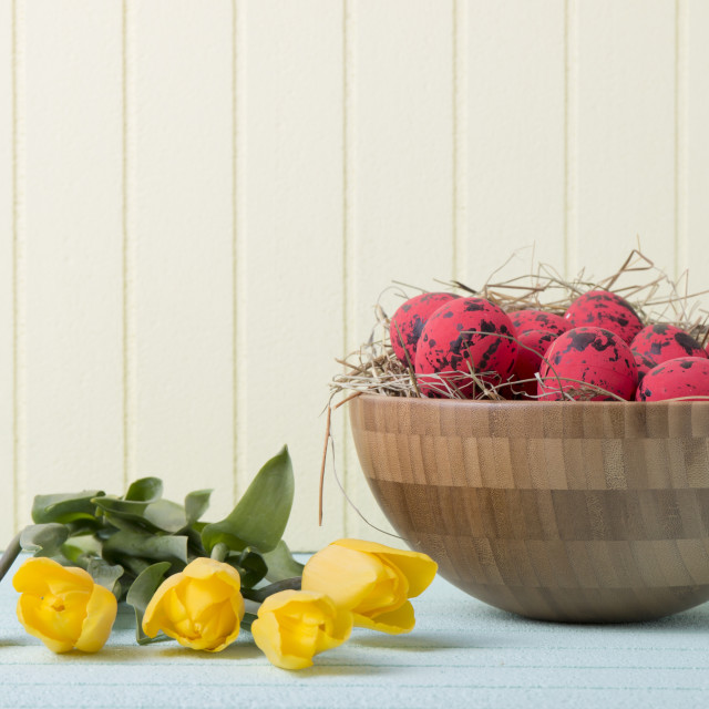 """Easter background with red eggs and yellow tulips on yellow wall"" stock image"