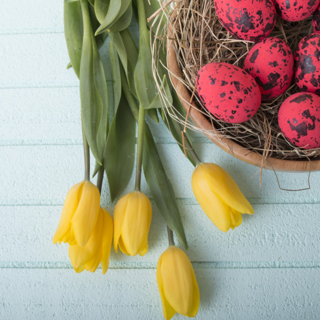 """Easter background with red eggs and yellow tulips"" stock image"