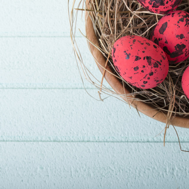 """Red easter eggs on blue background"" stock image"