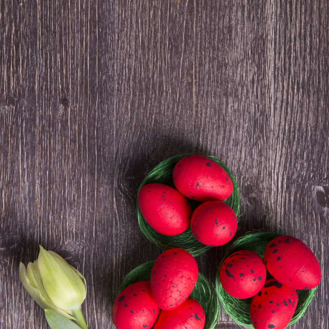 """Red Easter eggs on green nest and tulip"" stock image"