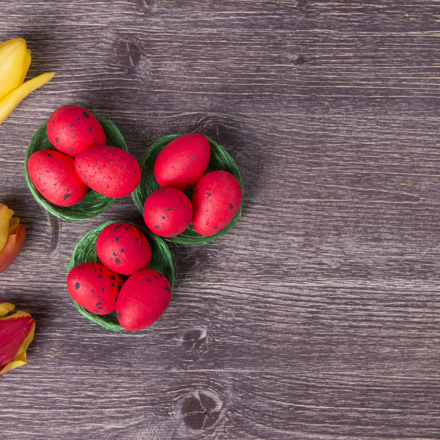 """Red Easter eggs on green nest and colorful tulips"" stock image"