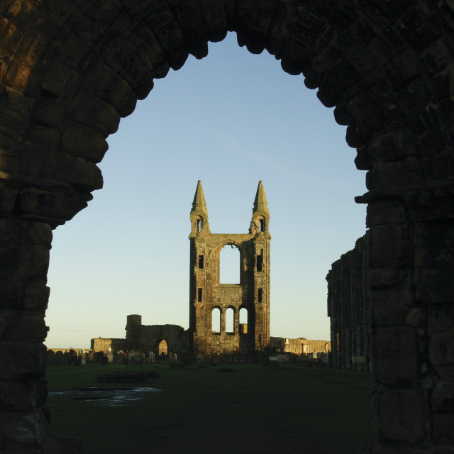 """""""St Andrews Cathedral"""" stock image"""