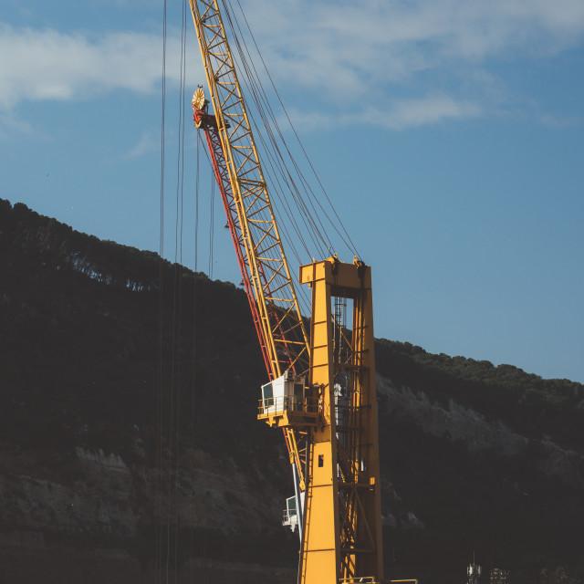 """Yellow Crane"" stock image"