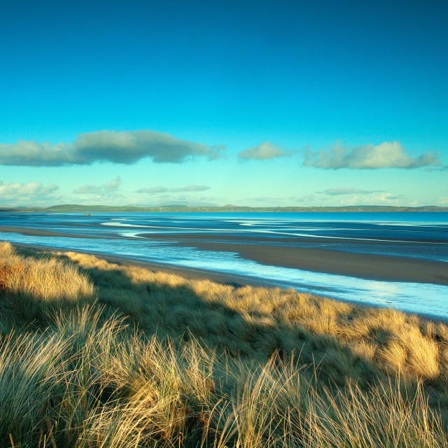 """""""Luce Sands"""" stock image"""