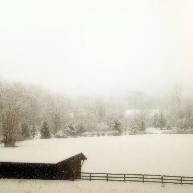 """snow fog"" stock image"