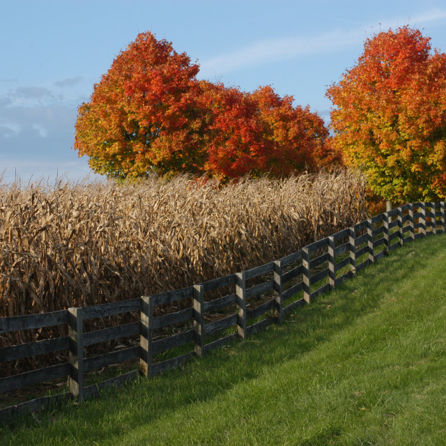 """""""countryside scenic autumn drive"""" stock image"""