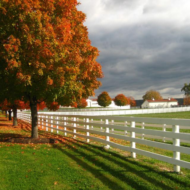 """rural farm in autumn sunset"" stock image"