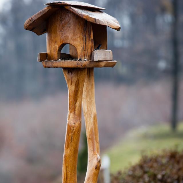 """Bird feeder"" stock image"