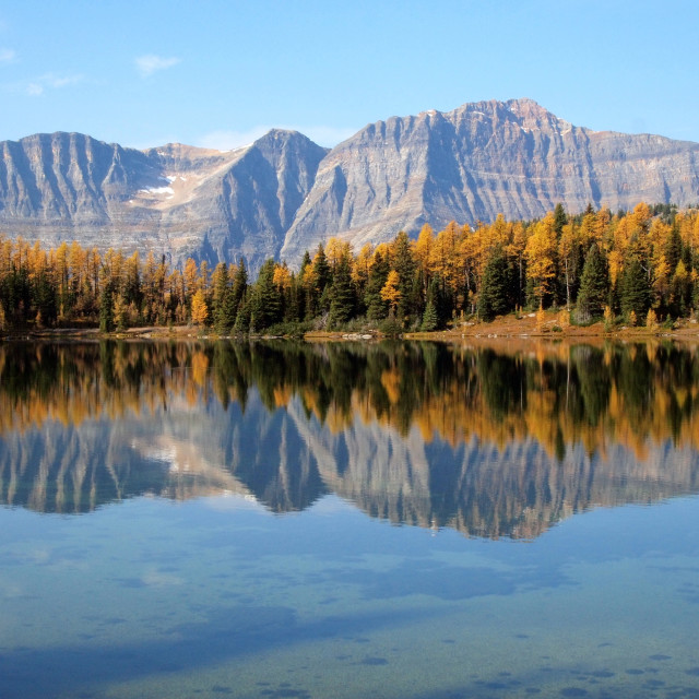 """""""reflection of mountain with autumn trees in lake"""" stock image"""