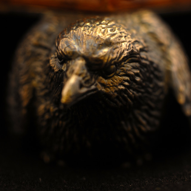 """forged eagle"" stock image"