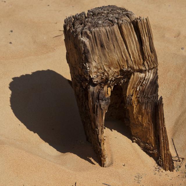 """""""Sunken wooden post"""" stock image"""