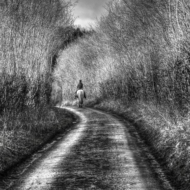 """""""Afternoon Stroll"""" stock image"""