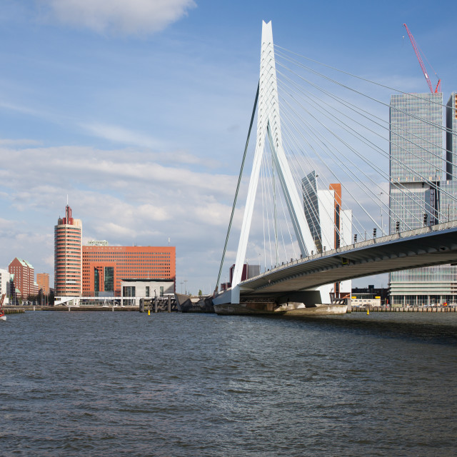 """""""City of Rotterdam Downtown Skyline in Netherlands"""" stock image"""