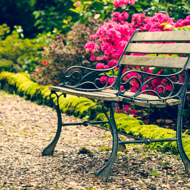 """Bench in the park"" stock image"