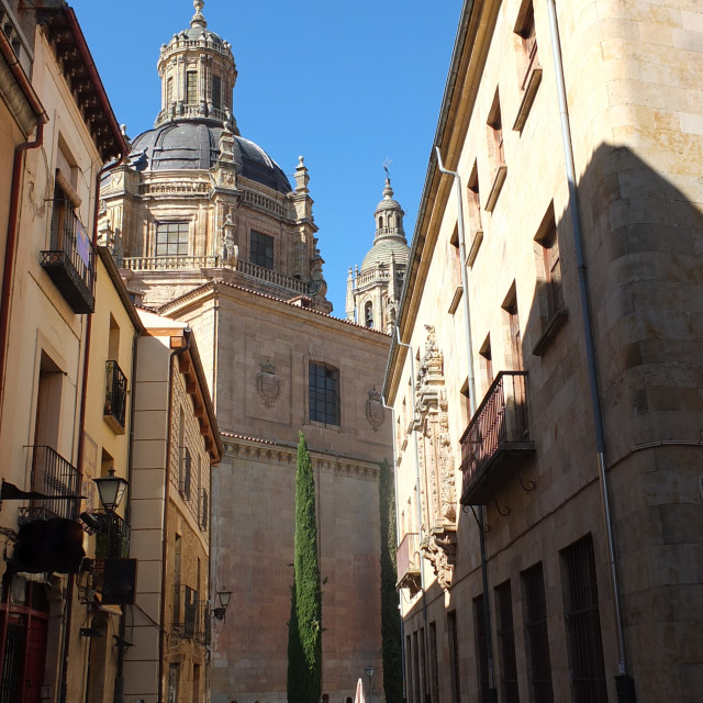 """Salamanca Cathedral Through The Side Streets"" stock image"