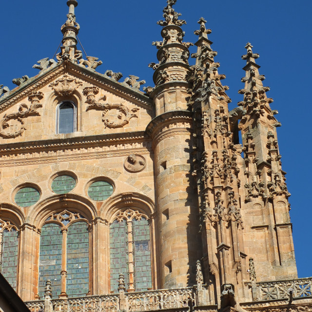"""Salamanca Cathedral Spires and Windows"" stock image"