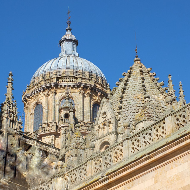 """Salamanca Cathedral Dome"" stock image"