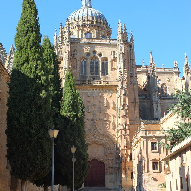 """Salamanca Cathedral View From Calle Patio Chico"" stock image"