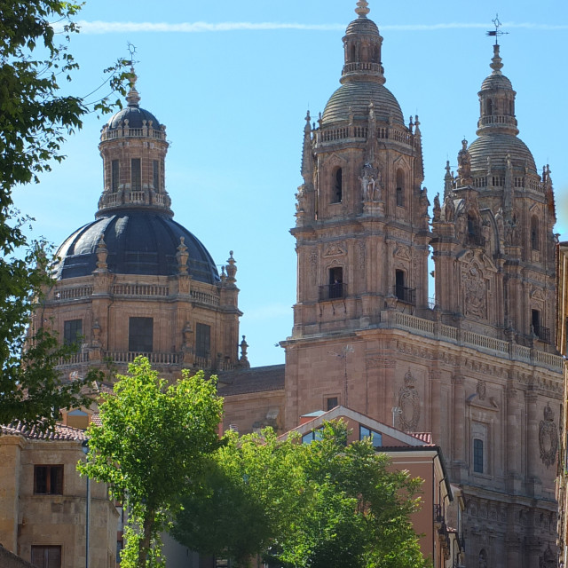 """Salamanca Cathedral Towers And Dome"" stock image"