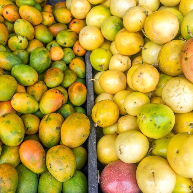 """Fresh Fruit at a Market"" stock image"