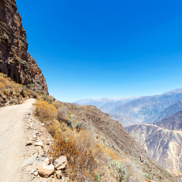 """Colca Canyon Trail"" stock image"