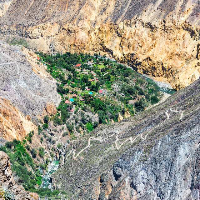 """Colca Canyon Oasis"" stock image"
