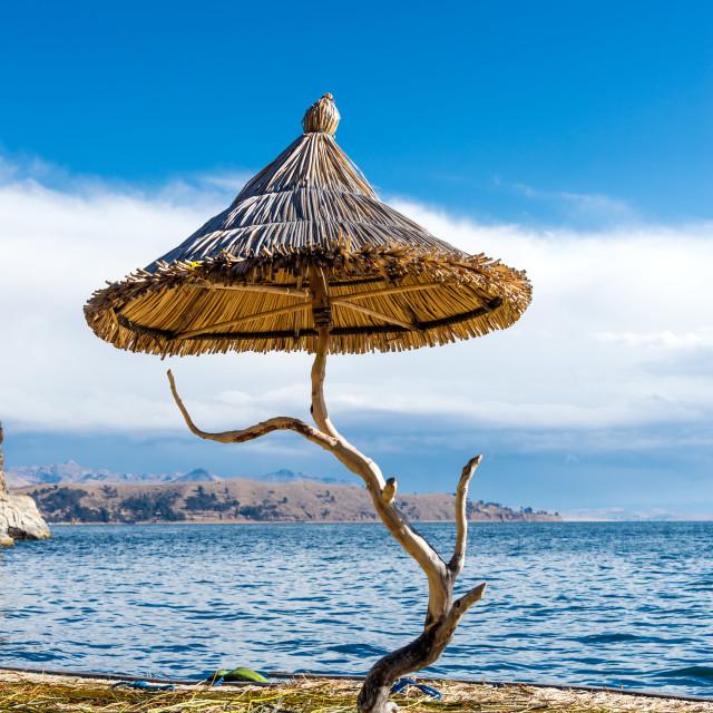 """""""Lake Titicaca Floating Island"""" stock image"""