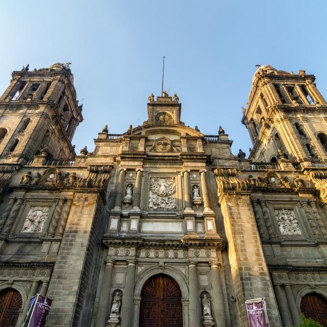 """""""Mexico City Cathedral Facade"""" stock image"""