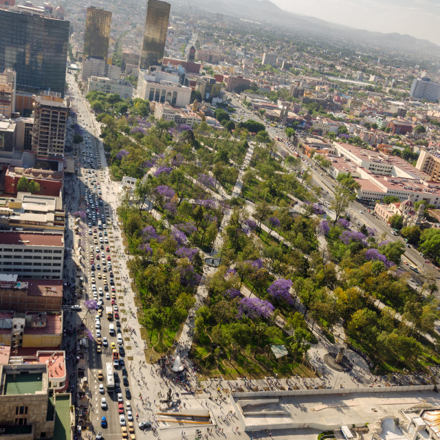 """""""Park and Mexico City"""" stock image"""
