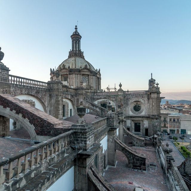 """""""Mexico City Cathedral"""" stock image"""
