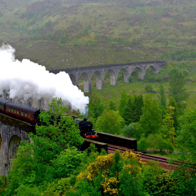 """Glenfinnan Viaduct and Train"" stock image"