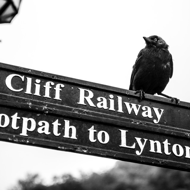 """""""Lynmouth Road Sign"""" stock image"""