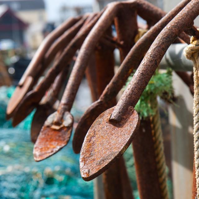 """Rusty Anchors"" stock image"