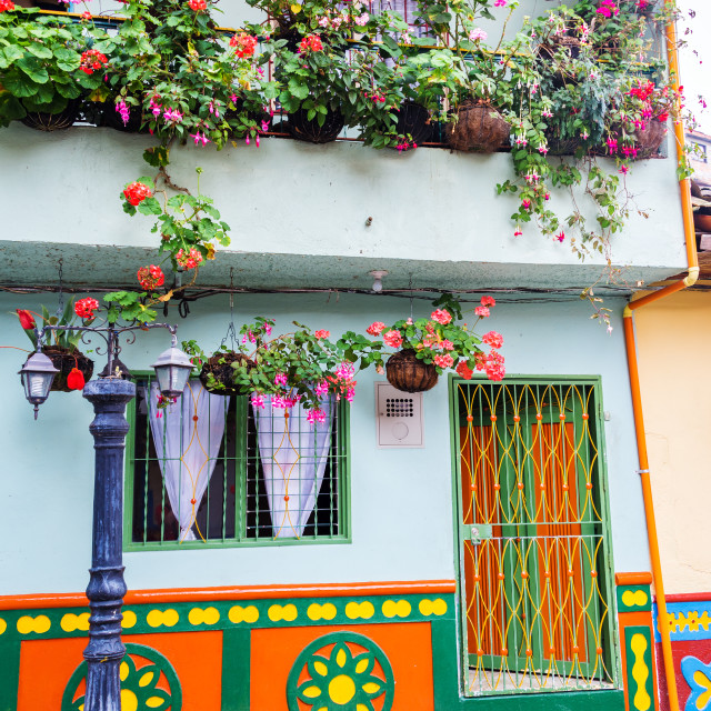 """""""Colorful House and Flowers"""" stock image"""