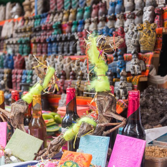 """""""Llama Fetus Offerings"""" stock image"""
