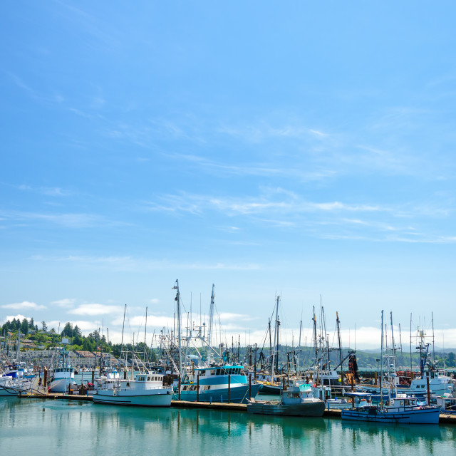"""""""Boats in Newport"""" stock image"""