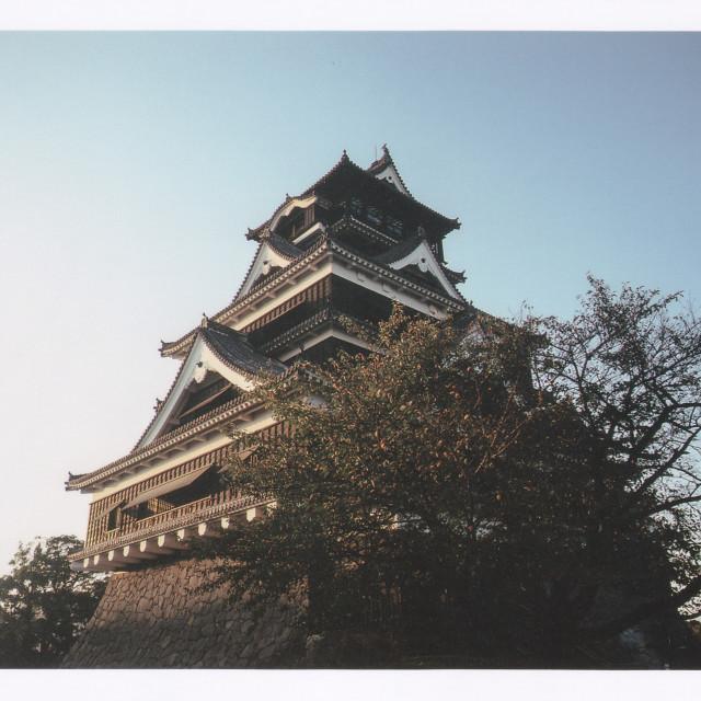 """Kumamoto castle"" stock image"