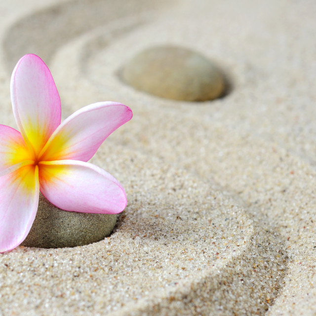 """Zen stones and frangipani flower"" stock image"