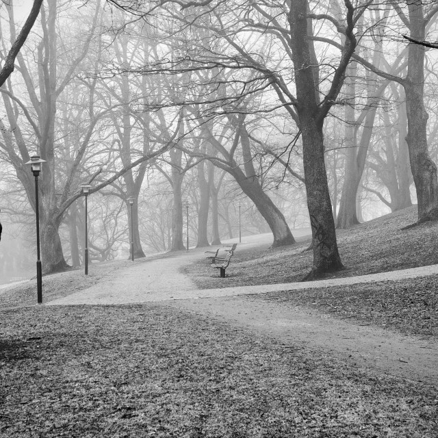"""Foggy day in Stockholm"" stock image"
