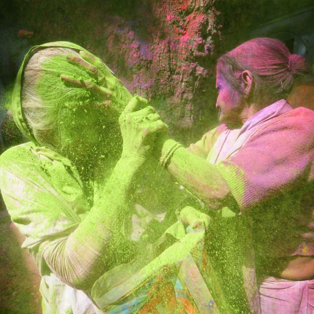 """Indian widows celebrate Holi in Vrindavan - Uttar Pardesh"" stock image"