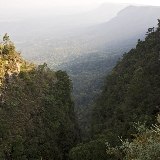 """Gods Window, Kleine Drakensbergen, South-Africa"" stock image"