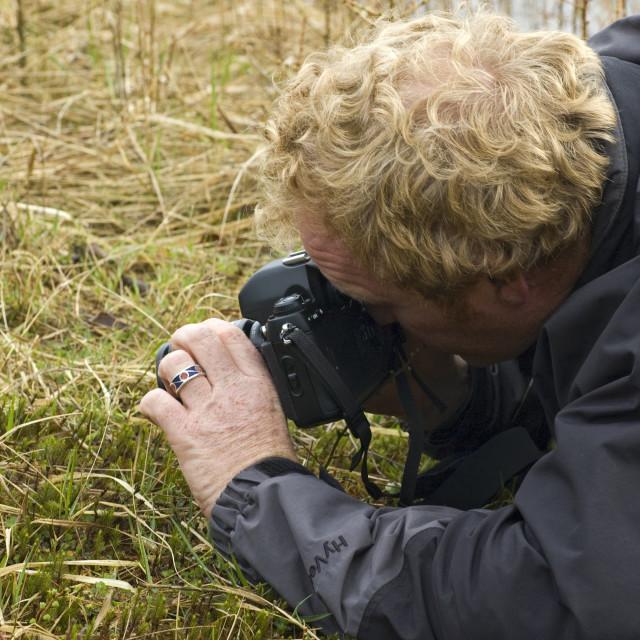 """Natuurfotograaf, Nature photographer"" stock image"