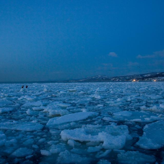 """""""Pack-ice for the coast of Hokkaido Japan, Pakijs voor de kust van Hokkaido Japan"""" stock image"""
