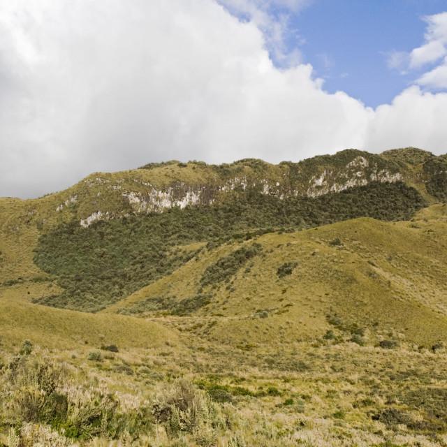 """""""Papallacta Pass Ecuador"""" stock image"""