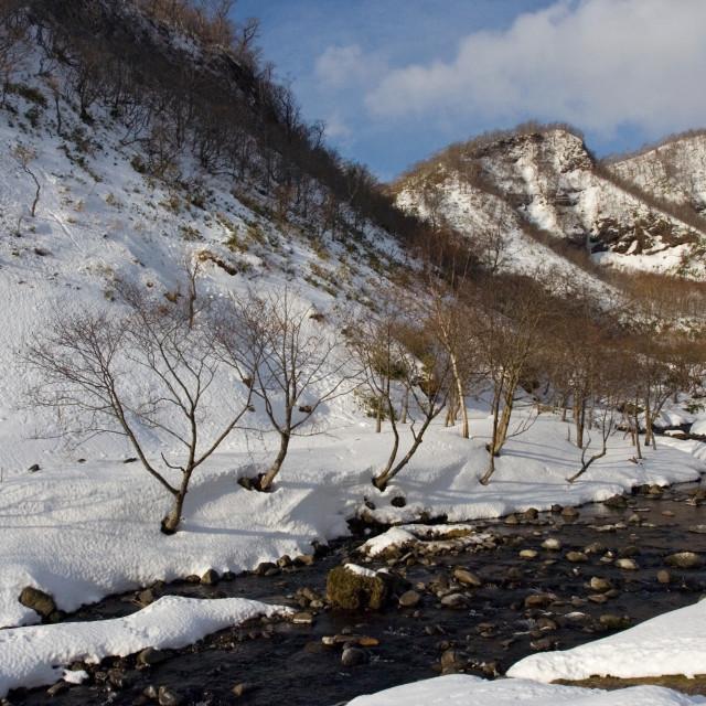 """""""Rausu, Hokkaido, Japan"""" stock image"""